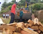 Đề nghị khởi tố vụ buôn lậu gỗ quý tại Quảng Trị