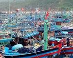 Đề nghị tính toán lại quy hoạch phát triển cảng Quy Nhơn