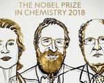 Giải Nobel Hóa học 2018 tôn vinh cuộc cách mạng của sự tiến hóa