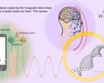 Công nghệ chống bức xạ điện từ bảo vệ sức khỏe đến Việt Nam