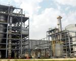 Khởi tố 4 bị can vụ Ethanol Phú Thọ