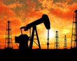 Giá dầu giảm trước thềm cuộc họp G20 và OPEC