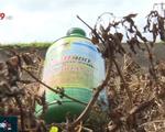 Nguy hại tình trạng phun thuốc diệt cỏ theo kiểu... tiêu thụ để không tồn hàng