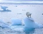 Băng tan khiến mỗi giây có tới 14.000 tấn nước Bắc Cực đổ ra biển