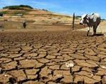 Khai mạc hội nghị Liên Hợp Quốc về biến đổi khí hậu (COP 24)