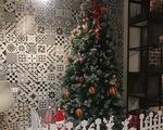 Dịch vụ cho thuê cây thông Noel sôi động dịp cận Giáng sinh