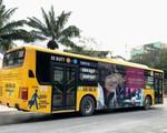 Miễn phí 10 ngày vé xe bus ra vào sân bay Tân Sơn Nhất