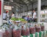 Xuất khẩu rau quả thu 13 triệu USD mỗi ngày - ảnh 1