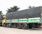 Khẩn trương thông quan cho xe chở nông sản bị ùn ứ ở Lạng Sơn - ảnh 1