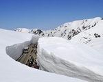 Nhật Bản: Giao thông ngưng trệ vì tuyết