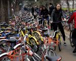 Trung Quốc: 400 triệu người đăng ký sử dụng xe đạp chia sẻ