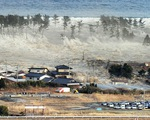 7 năm sau thảm họa động đất tại Nhật Bản