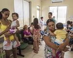 Dịch sốt vàng da bùng phát mạnh trở lại tại Brazil