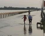 Hiện tượng nóng lên toàn cầu 'nhấn chìm' nhà cửa của trên 5 triệu người