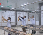Xuất khẩu thịt gà sẽ sôi động trong năm 2018