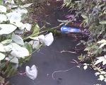 Bình Định: Hơn 800 hộ dân huyện Tuy Phước không có nước sạch sinh hoạt