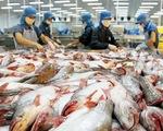 Mỹ áp thuế chống bán phá giá cá tra cao nhất từ trước đến nay
