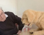 Robot chó hỗ trợ điều trị cho người cao tuổi