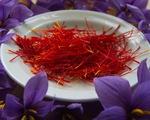 Nhụy hoa nghệ tây có thể chữa bệnh Alzheimer