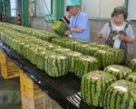 Nhật Bản thúc đẩy xuất khẩu hàng nông sản
