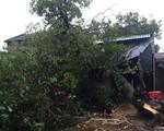 Khẩn trương giúp dân sửa chữa 600 căn nhà tốc mái do lốc xoáy tại Đăk Lăk