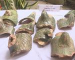 Công bố kết quả khảo cổ mới tại Hoàng Thành Thăng Long