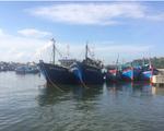 Ngư dân Bình Định thống nhất phương án đền bù tàu cá theo Nghị định 67