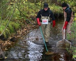 Rò rỉ hóa chất nghiêm trọng tại Phần Lan