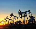 Mỹ giảm mạnh sản lượng khai thác dầu thô
