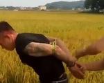 Bắt giữ các đối tượng côn đồ bảo kê máy gặt lúa