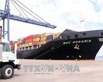 Đón tàu hàng 40.000 tấn cập cảng TP.HCM - ảnh 2