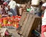 Lợi ích từ liên kết sản xuất - Kinh nghiệm từ Kenya