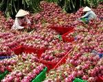 Nông sản Việt Nam được ví như