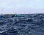 Đưa 31 ngư dân gặp nạn vào bờ an toàn - ảnh 1