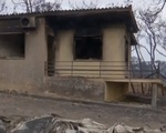 Người Hy Lạp bàng hoàng trở về nhà sau cháy kinh hoàng