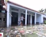 Nước lũ dâng cao, rác thải bủa vây người dân ngoại thành Hà Nội