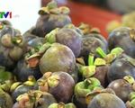Trái cây Thái Lan nhập khẩu vào Việt Nam để được hưởng lợi thuế?