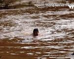 Trẻ em liều mình vớt củi giữa dòng nước lũ ở Điện Biên