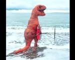 Sự thật thú vị về chú khủng long lướt sóng tại Đan Mạch
