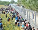Mỹ hạ mức trần tiếp nhận người tị nạn trong năm 2019