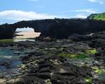 Vòm đá tự nhiên Darwin's Arch nổi tiếng đã sụp đổ - ảnh 2