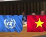 Việt Nam đóng góp tích cực vào Ủy ban Luật pháp quốc tế