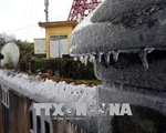 Xuất hiện băng tuyết trên đỉnh núi Phia Oắc, Cao Bằng