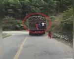 Thót tim cảnh em bé bò qua quốc lộ, ngay trước đầu ô tô ở Quảng Ninh - ảnh 2