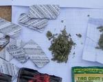 Bình Định: Gần 50 đối tượng nghiện ma túy sử dụng cỏ Mỹ