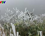 Mẫu Sơn lạnh -2 độ C, băng tuyết phủ trắng xóa - ảnh 2