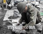 Kết luận thanh tra về các dự án lát đá vỉa hè tại Hà Nội - ảnh 1