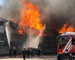 Hỏa hoạn ở kho hàng chế biến hương, huy động trên 200 người chữa cháy