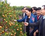 Chủ tịch Quốc hội Nguyễn Thị Kim Ngân thăm xã nông thôn mới ở Hưng Yên