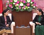 Tăng cường công tác kiểm toán Nhà nước Việt Nam và Lào